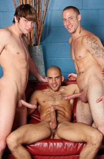 austinwilde trio